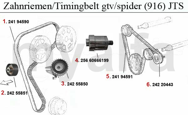 gtv/spider (916)