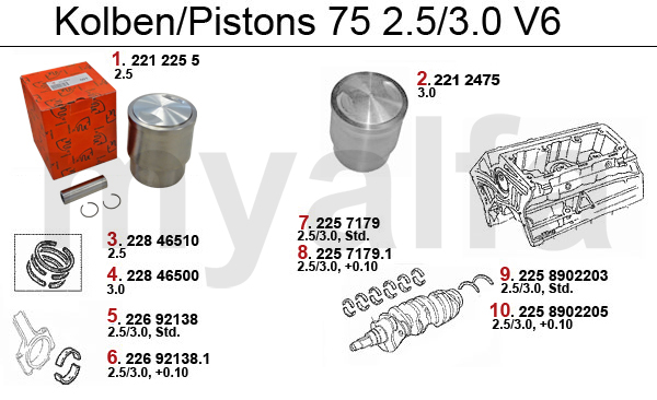 PISTONS/BEARINGS 6-Cyl.