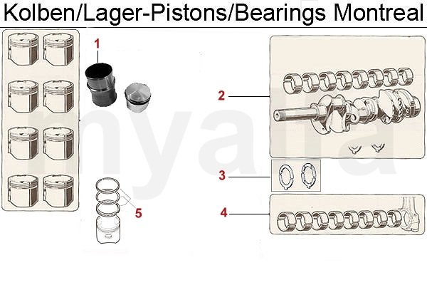 PISTONS/BEARINGS