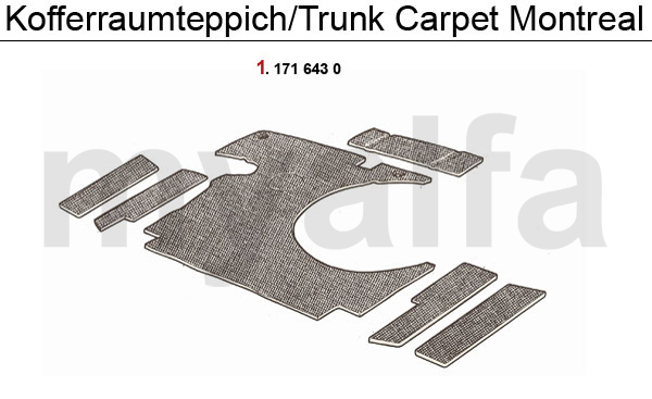 TRUNK CARPET